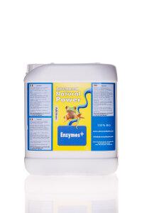 Advanced Hydroponics of Holland Enzymes + 5 l