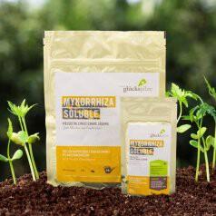 Mykorrhiza Soluble 90 g