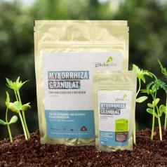 Mykorrhiza Granulat 180 g